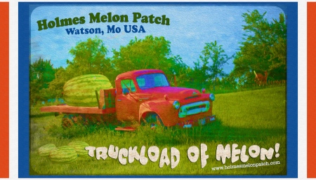 Design for Holmes Melon Patch